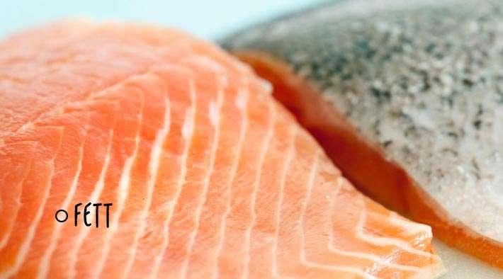 Fett – Das Schwergewicht der Hauptnährstoffe
