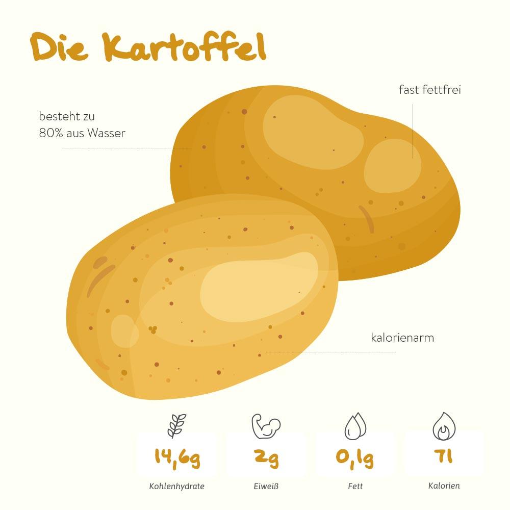 Die Kartoffel – die tolle Knolle
