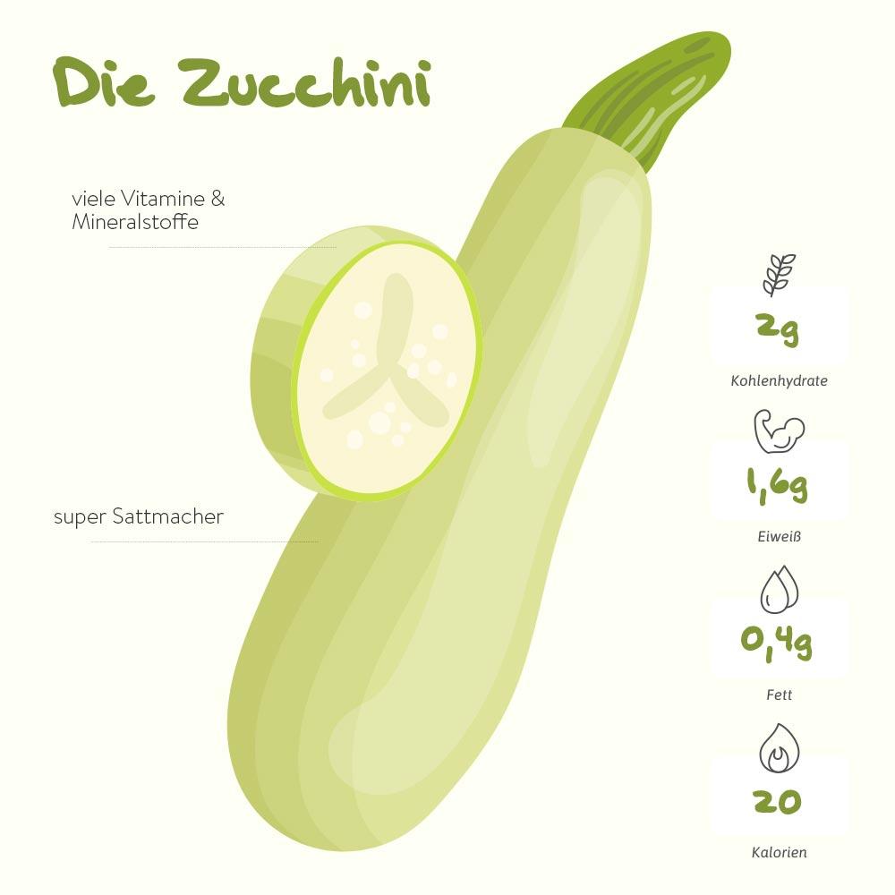 Die Zucchini – ein Allrounder in der Küche