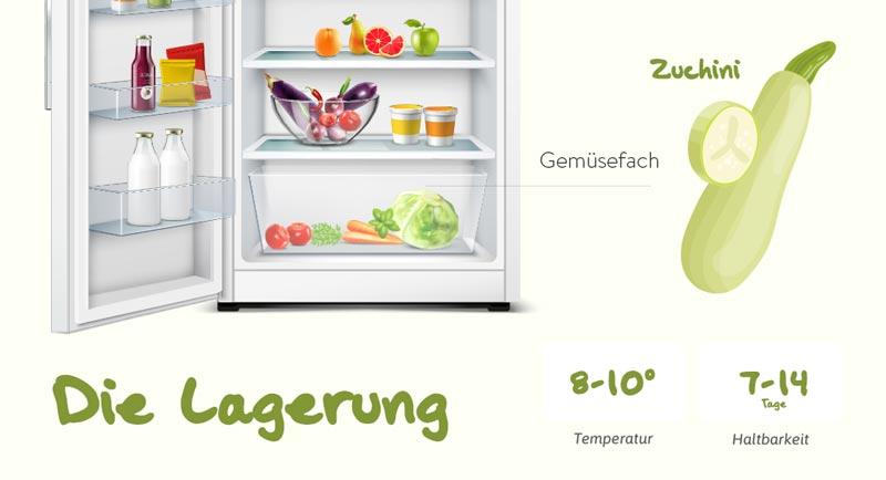 Tipps zum Einkauf und der richtigen Lagerung von Zucchinis