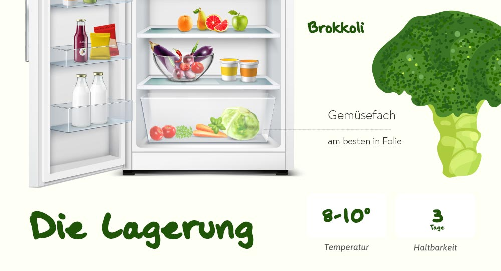 Lagerung von Brokkoli