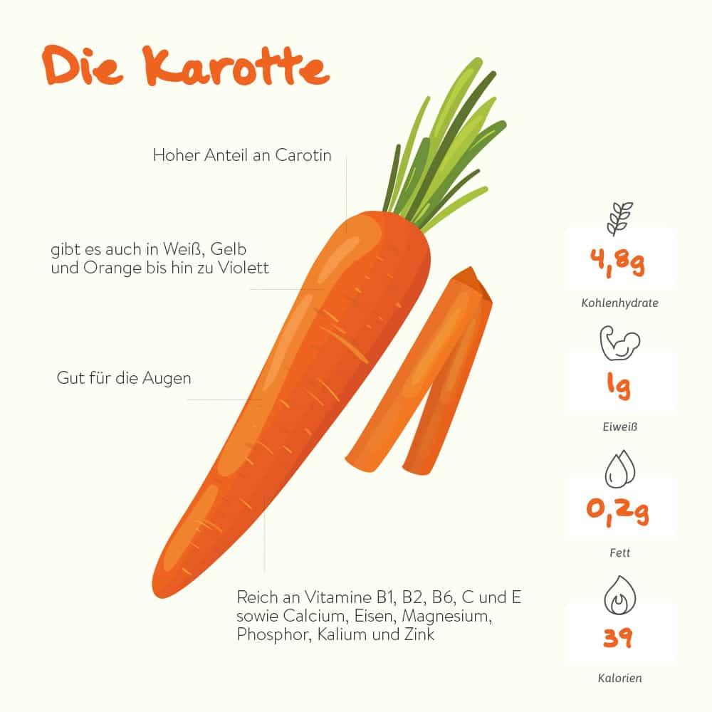 Die Karotte – der Carotin-Lieferant