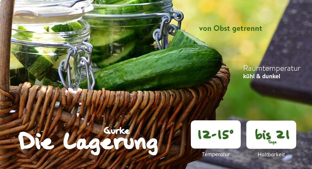 Die richtige Lagerung von Gurken (Food photo created by Racool_studio – www.freepik.com)