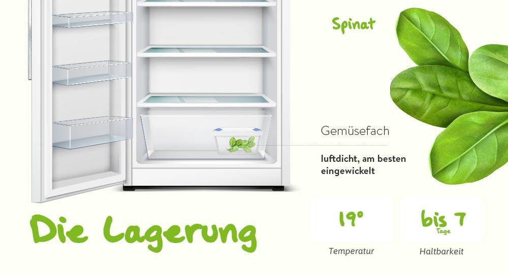 Lagerung von Spinat (Food photo created by www.freepik.com)